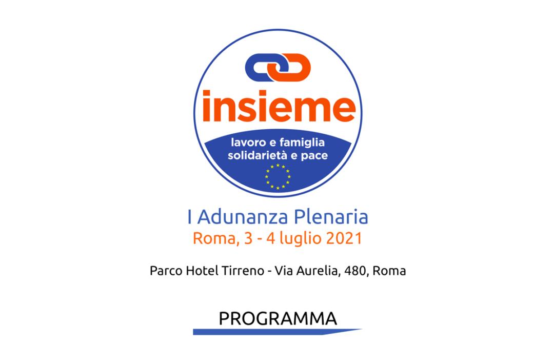Adunanza plenaria di Insieme: il programma 3-4 luglio 2021